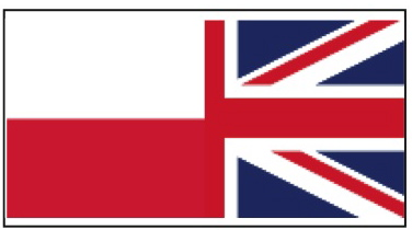 eng-pol flag_Layout 1
